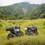 【超弾丸ロンツー】ロイヤルエンフィールド ヒマラヤで2500kmを3日で走る!〜2日目熊本阿蘇山で絶景ツーリング!〜
